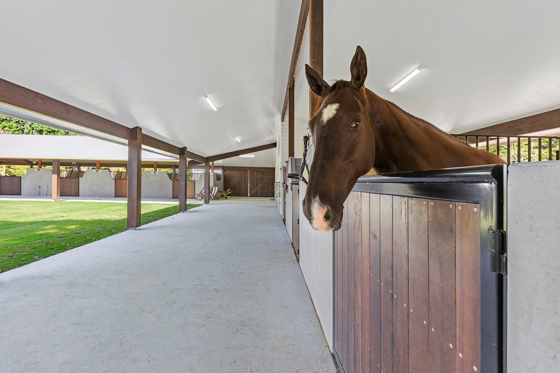 5 Ways to Design a Stable That'll Keep Your Horse Happy and Healthy